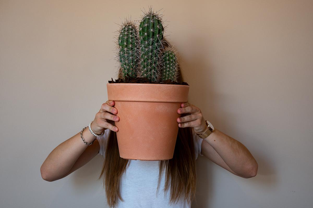 vasi per cactus