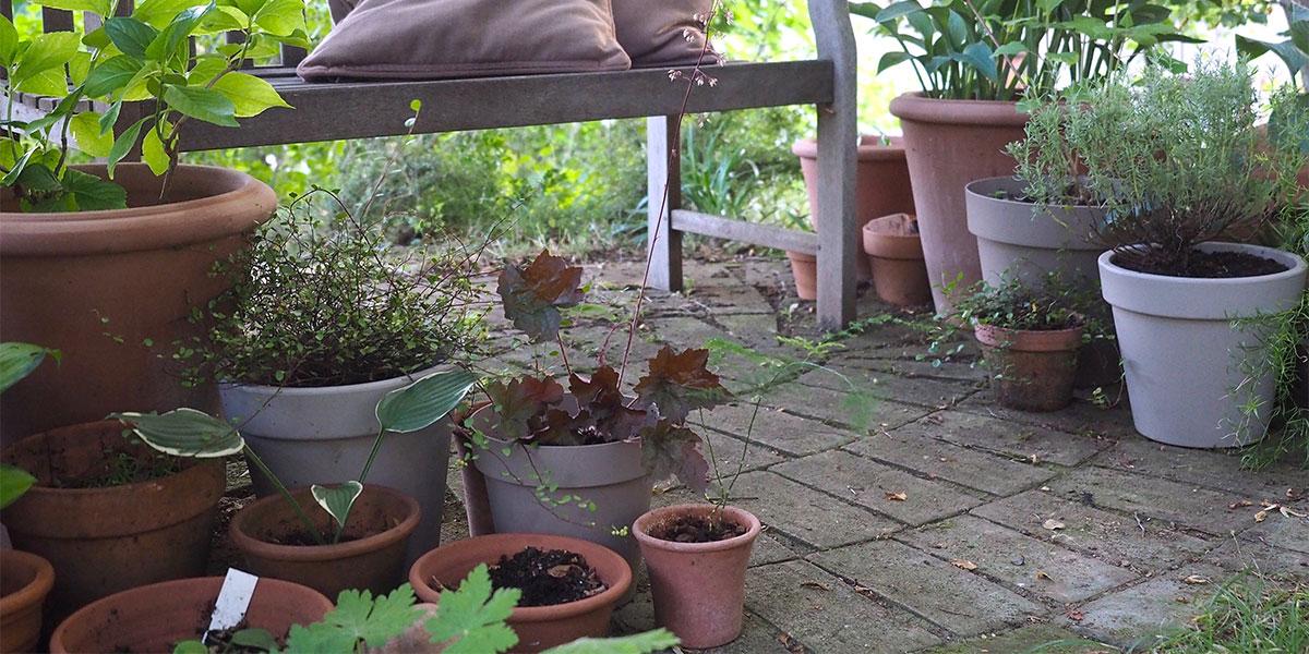 Vasi in plastica con i vasi in terracotta