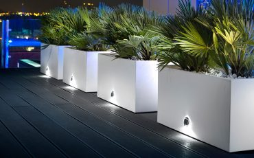 Arredare con i vasi: design e architettura con il pollice verde