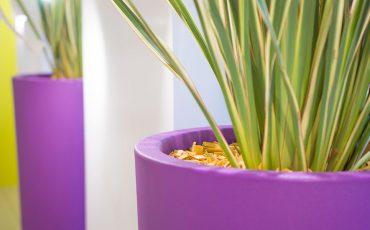 Cultura sul giardinaggio in vaso: come scegliere la forma e il materiale