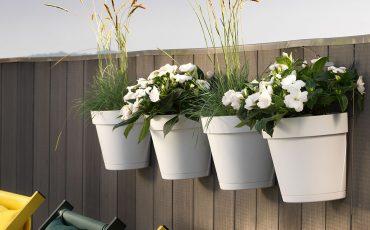Fiori e piante per vasi da appendere