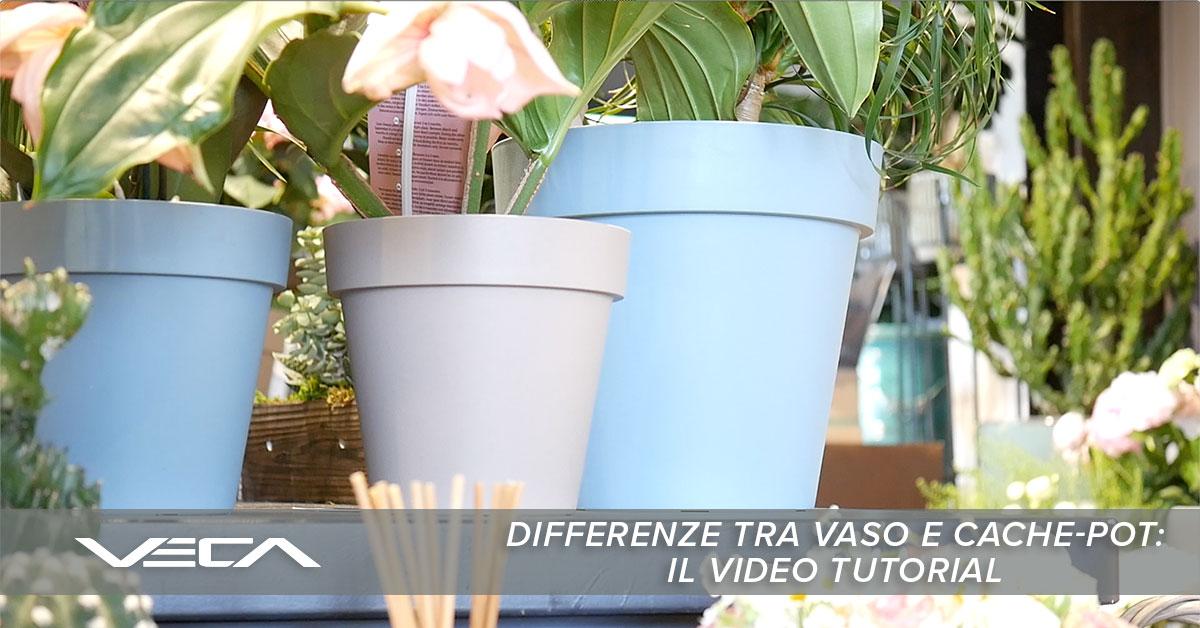 differenza tra vaso e cache-pot
